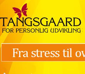 """Online kursusforløb """"Fra stress til overskud og glæde- step by step"""