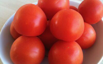 Plant en tomatfrø og få hundrede tomater